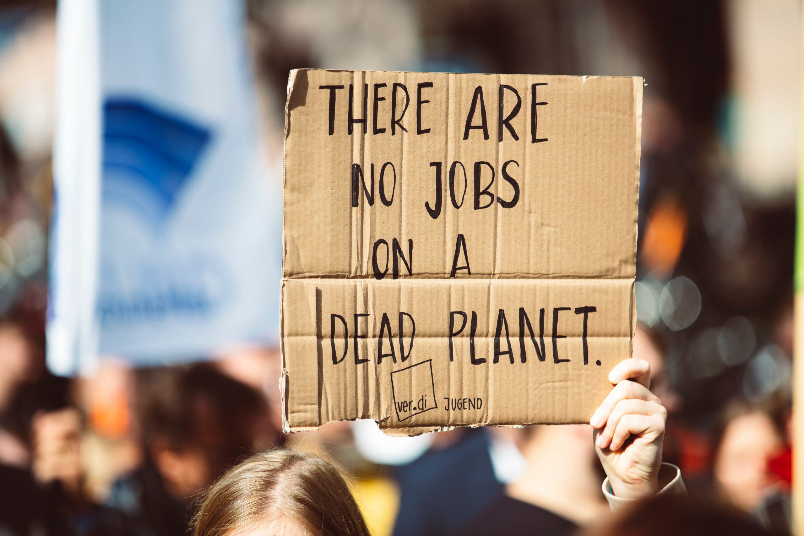 Placard reading 'there are no jobs on a dead planet'